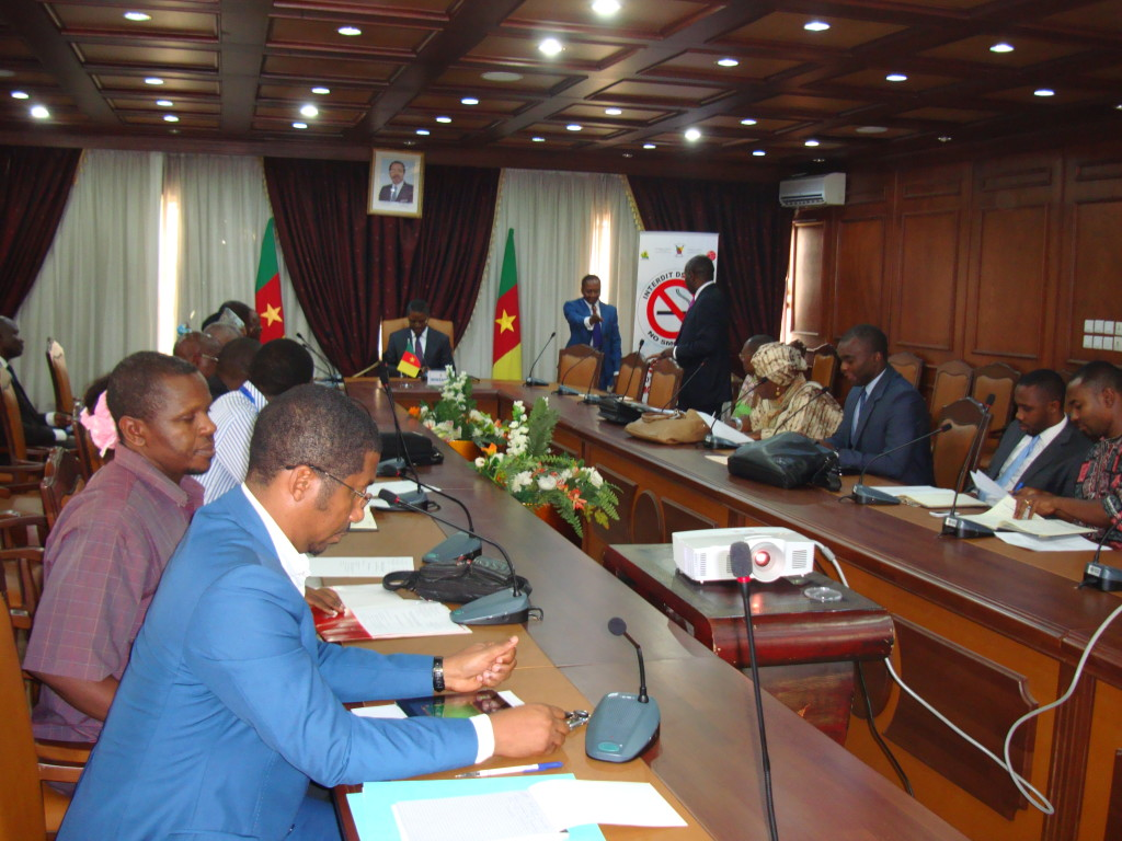 Stakeholders consisting of the Ministry of Basic Education, Ministry of Secondary Education, telephone operators, Sightseers, Helen Keller International, Perspective, International Eye Foundation, and Union of United Councils and Cities of Cameroon